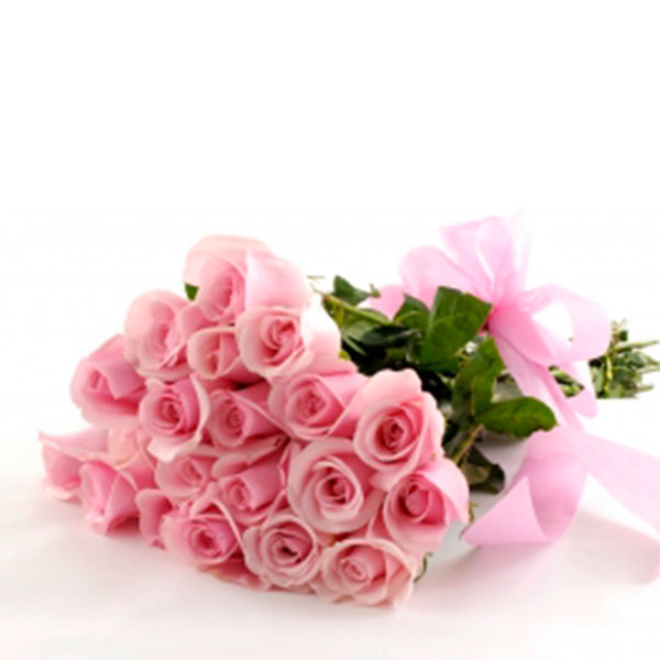 20 rose color cipria rosa pallido