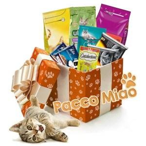 cesto regalo con cibo per gatto vendita online