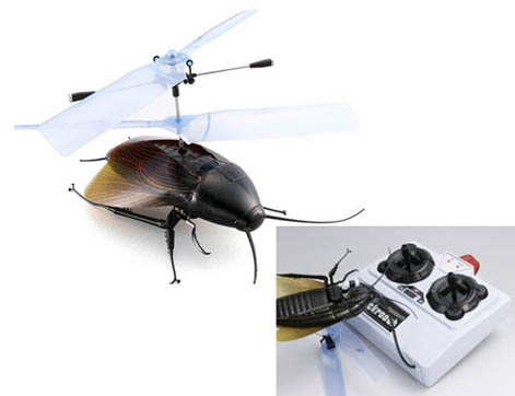 Cucaracha R/C