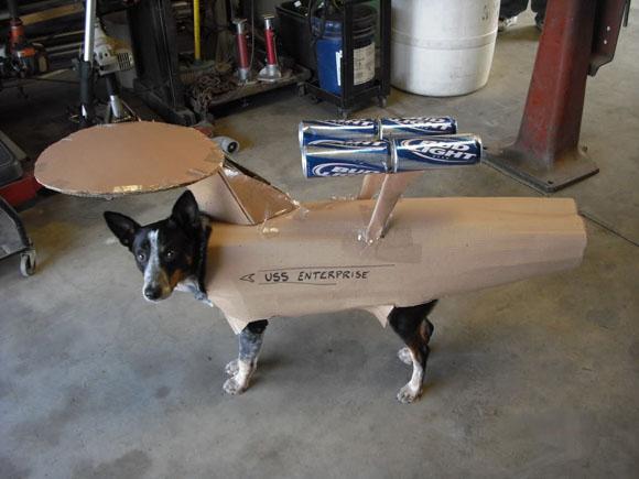perro-enterprise