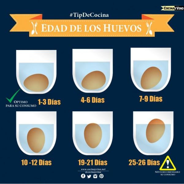 edad-de-los-huevos