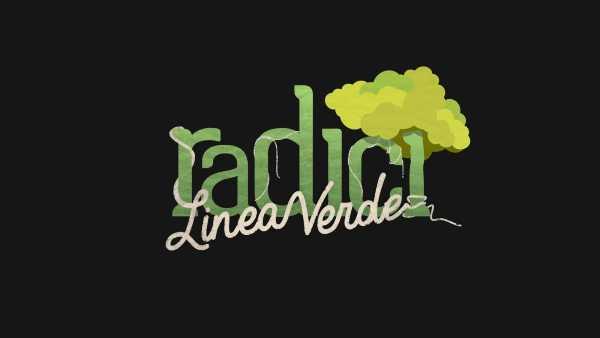 """Oggi in TV: """"L'Emilia Romagna a """"Linea Verde Radici"""""""".  Su Rai1 un viaggio tra terra e acqua"""
