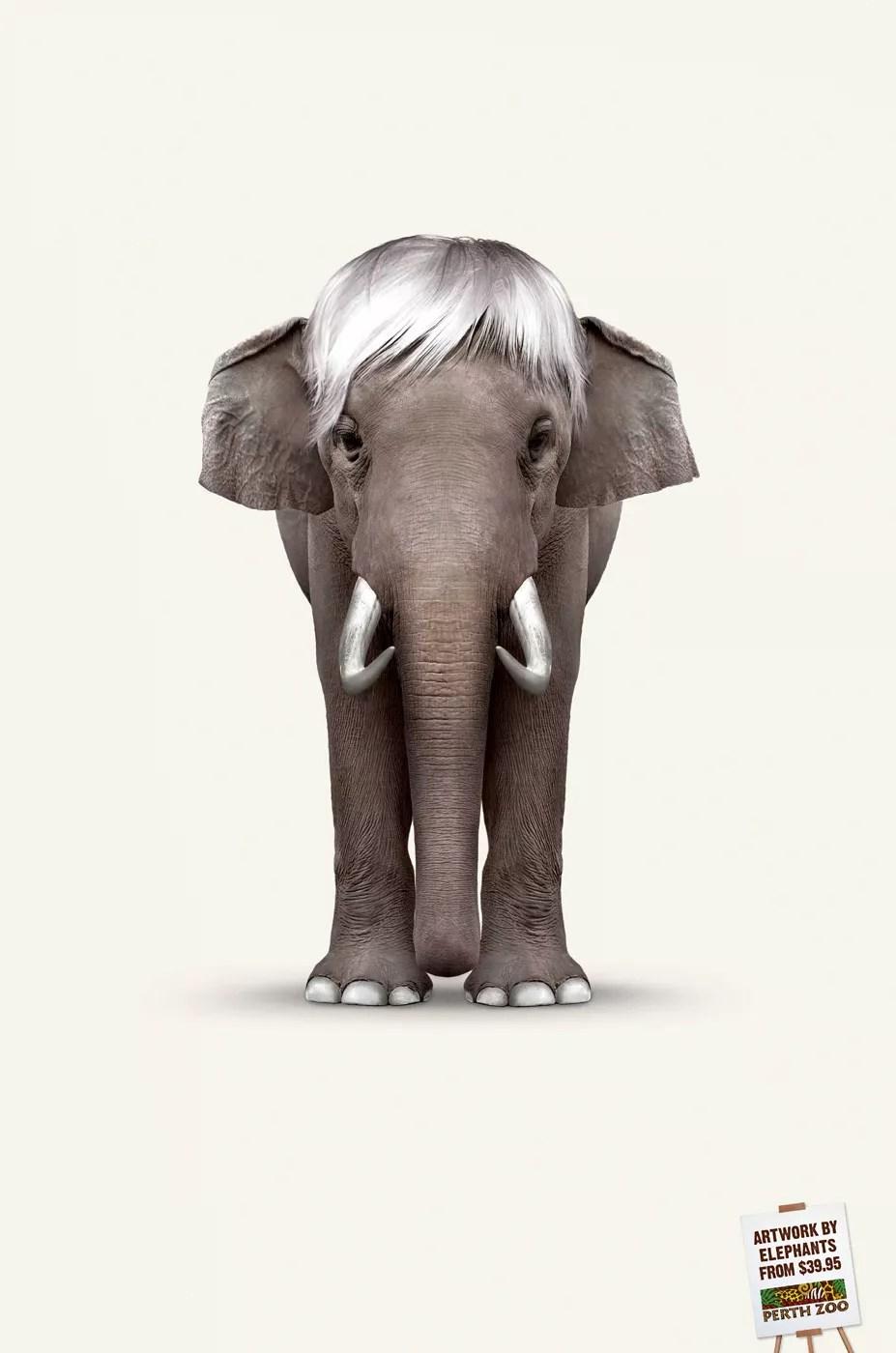 Perth Zoo — Elephant Art: Warhol