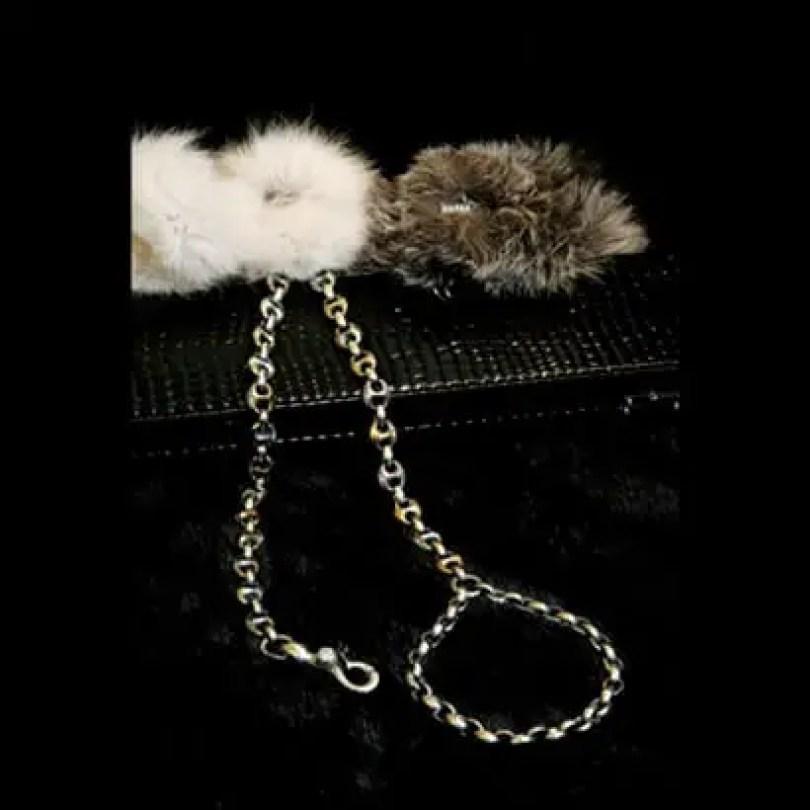 38 inch leash holder - Você daria este colar para seu Pet?