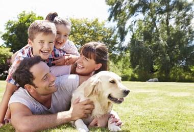 Family Friendly Dogs FI