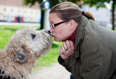 training your dog to give kisses