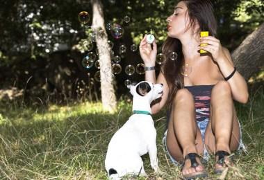 dog bubbles games