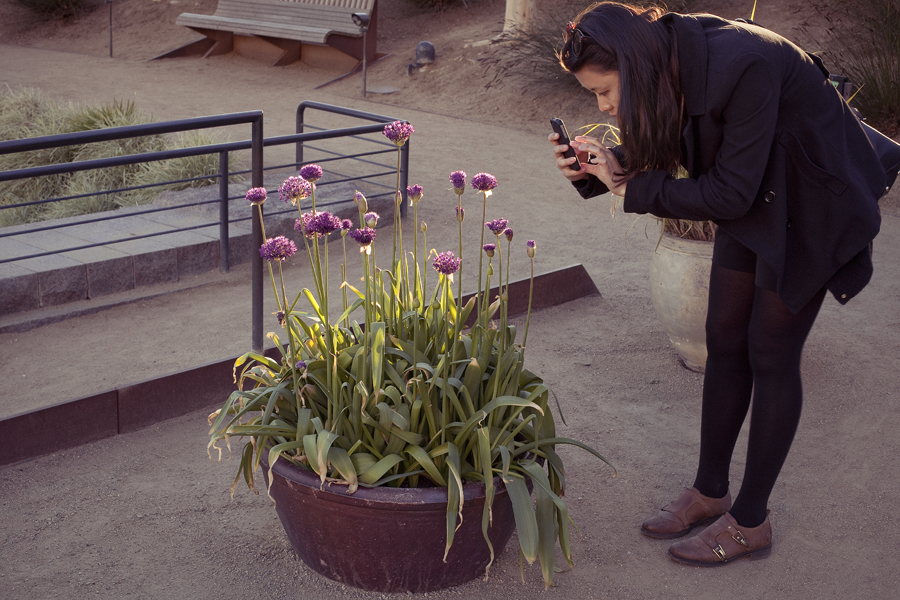 Deb taking a photo of a potted plant at the Getty Center, Los Angeles.