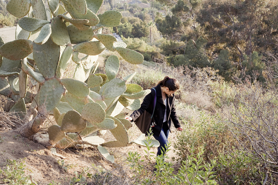 Cacti and Deb up a difficult trail at Runyon Canyon Park in Hollywood, Los Angeles.
