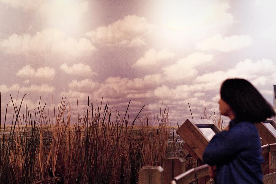 Ela at a marsh display at the Natural History Museum in Los Angeles.