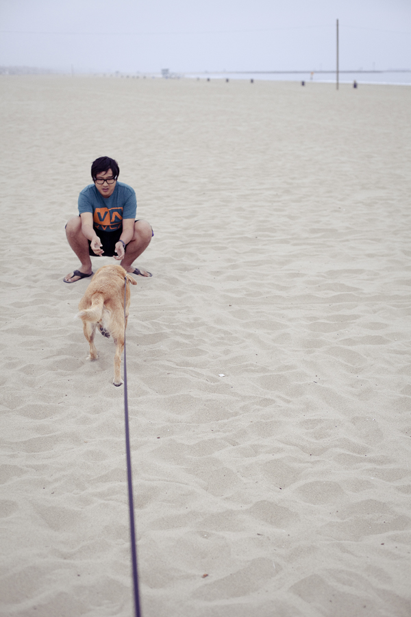 Conan beckoning to Annabel on the beach at Marina Del Rey.