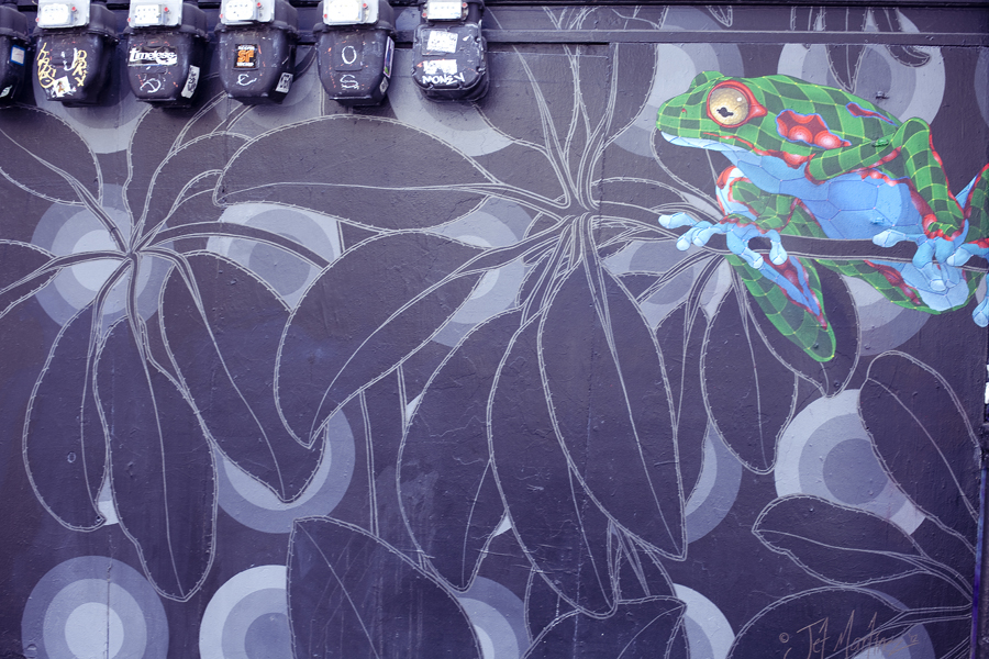 Mural of a stylised frog among flora on Haight in San Francisco.