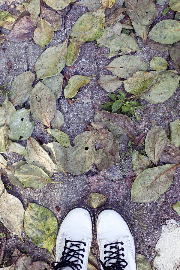 white Dr. Martens classic 1460 boots on spring leaves.