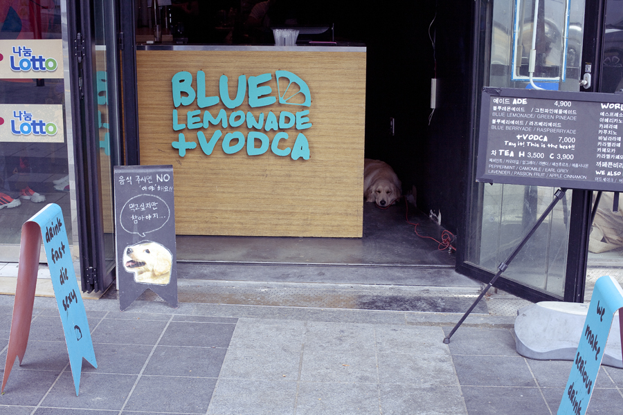 Blue Lemonade + Vodka in Busan, South Korea.