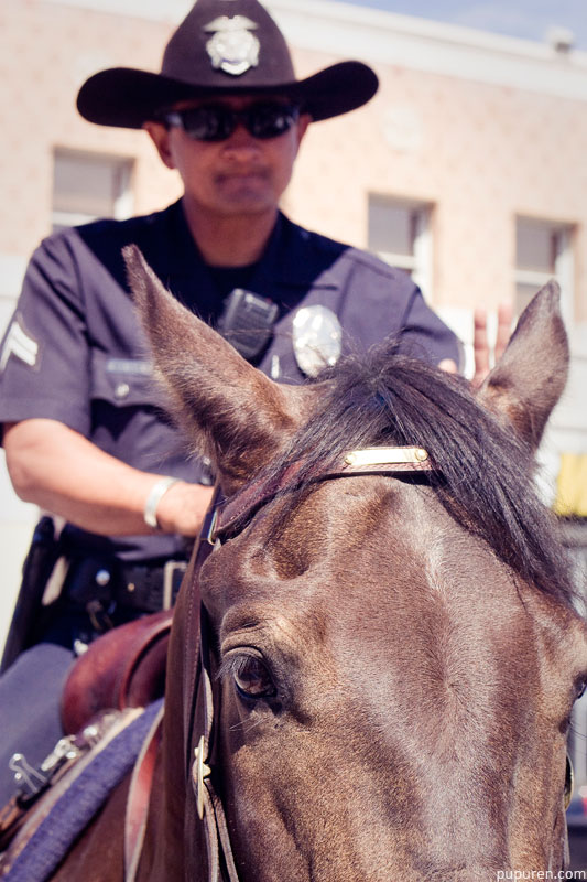 Policeman on a horse at Venice beach, Los Angeles.