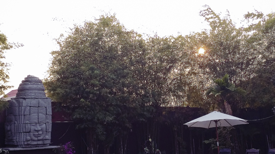 Setting sun through the foliage by the pool at the Lotus Lodge, Siem Reap, Cambodia.