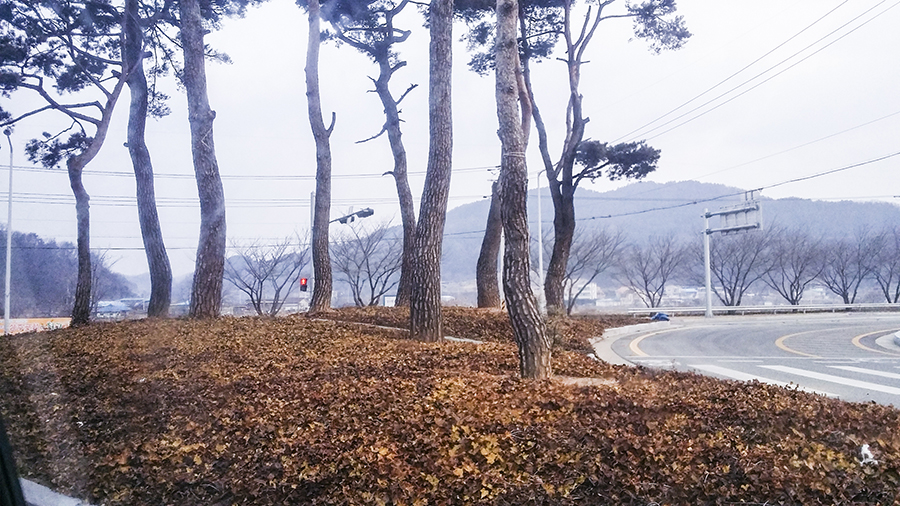 Scenic view driving up a mountain in Sangju, South Korea.