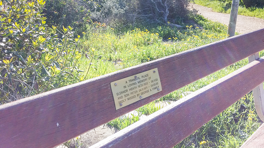 Bench with a memorial at the Silvermine Wetland Conservation Area, Fish Hoek, Cape Town, South Africa.