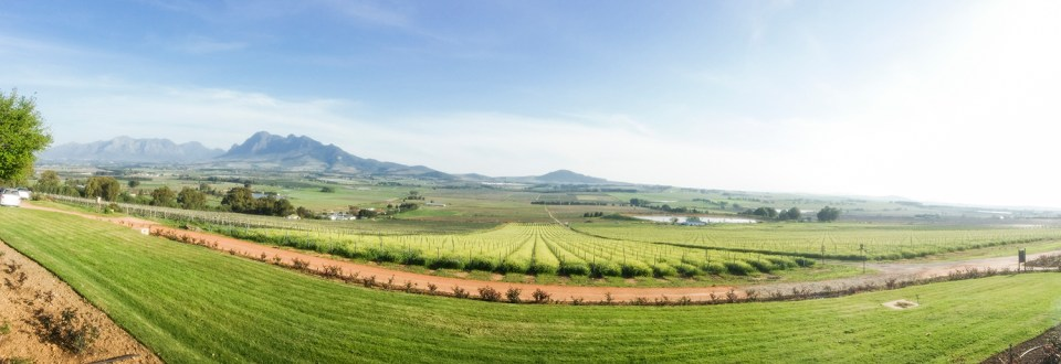 Panoramic view of Fairview Wine and Cheese, South Africa.