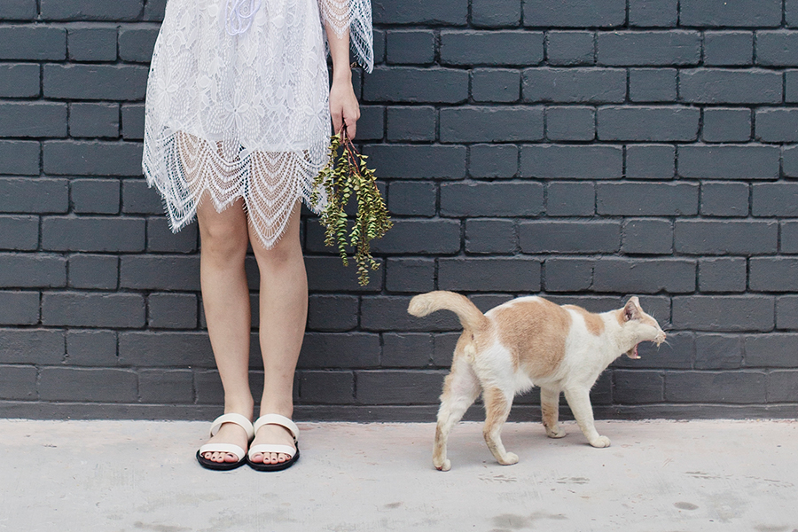 Dresslink white backless lace romper, BlackOut SG black and white sandals.