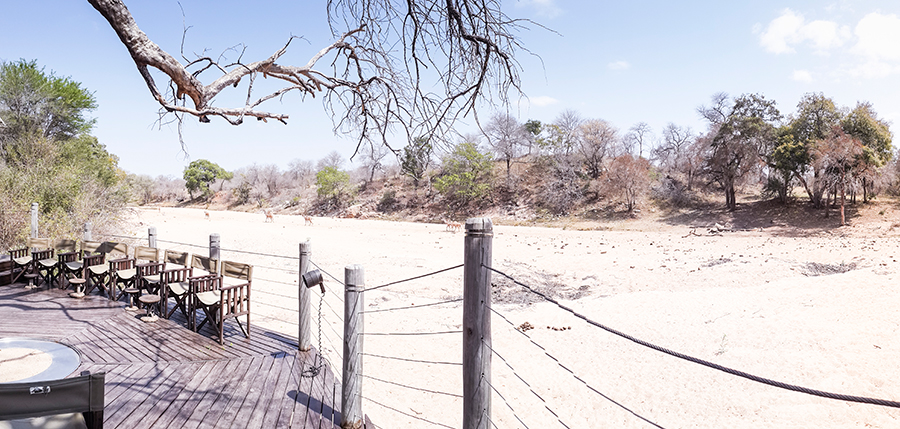 Panorama of wildlands from Rhino Post Safari Lodge, Kruger National Park, South Africa.