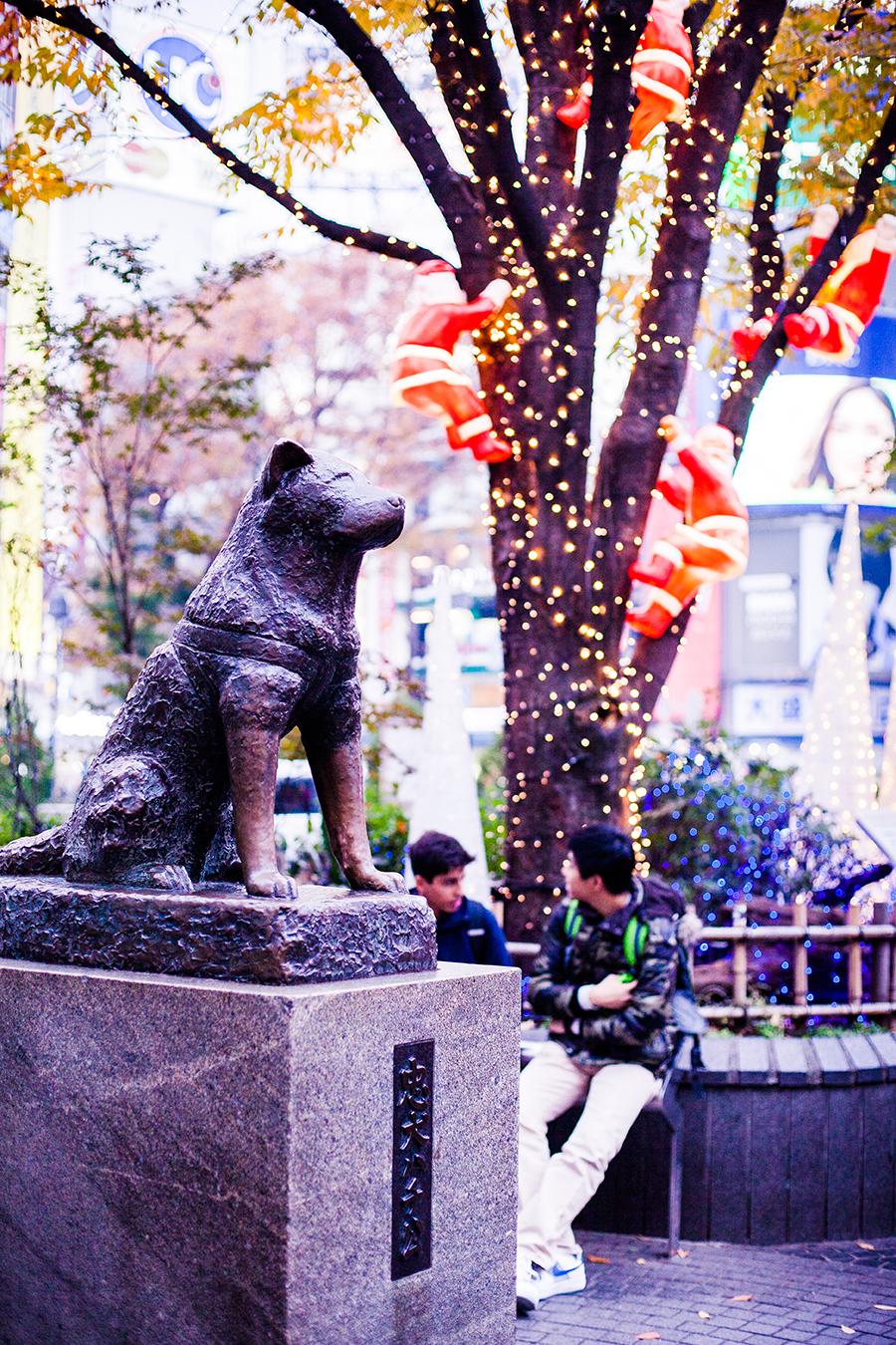 Statue of Hachiko in Shibuya, Japan.