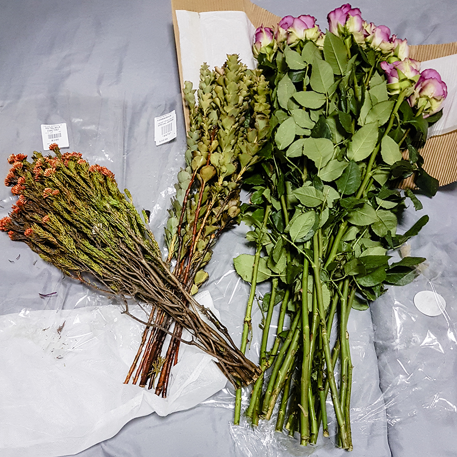 Making a flower bouquet: Purple roses, orange Metalasia, Paranormus.