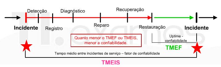 TMEIS