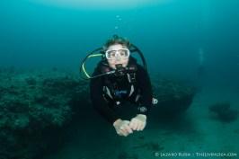 Diver enjoying the wreck