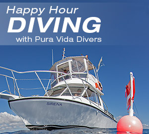 Happy-Hour-Diving