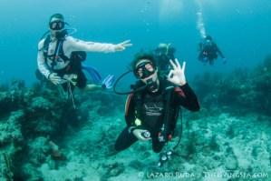 Drift Diving Singer Island