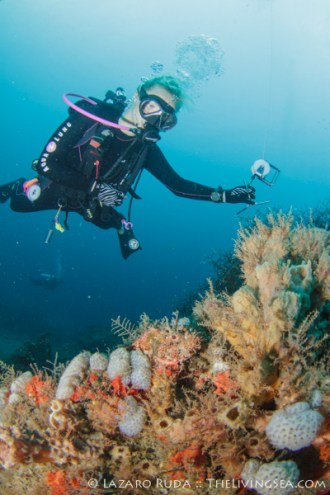 Lindsay spots a scorpionfish on the reef