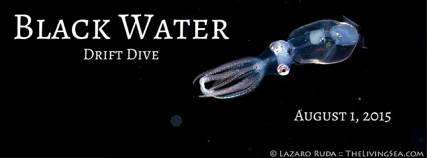Black Water Drift Dive (1)