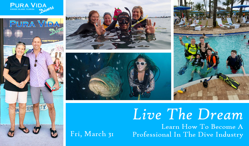 Live The Dream – Become A Professional In The Dive Industry