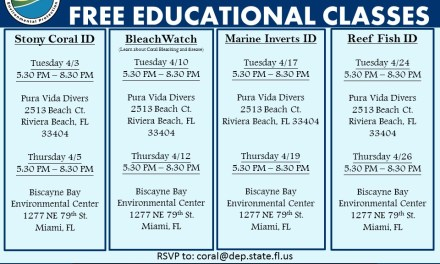 FREE REEF EDUCATION CLASSES