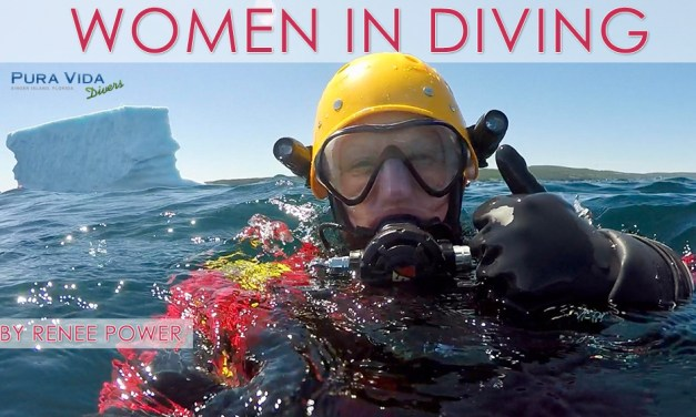 JULY 27 SOCIAL NIGHT: WOMEN IN DIVING