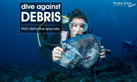 DIVE AGAINST DEBRIS
