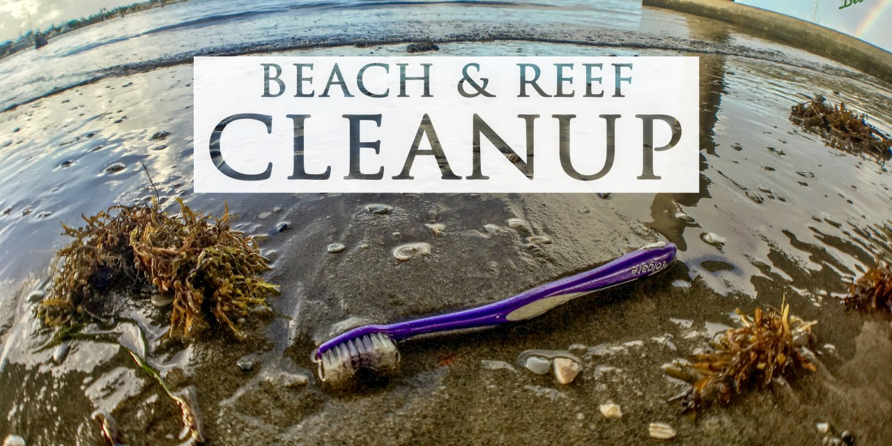 BEACH & REEF CLEANUP – VOLUNTEERS NEEDED!