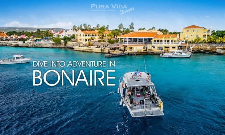 2021 BONAIRE DIVE ADVENTURE