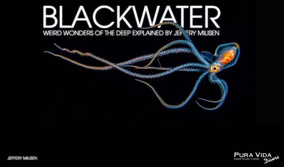 BLACKWATER: WEIRD WONDERS OF THE DEEP