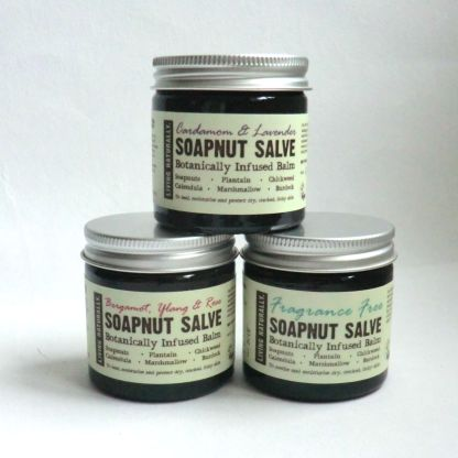 Living Naturally Organic Soapnut Salve