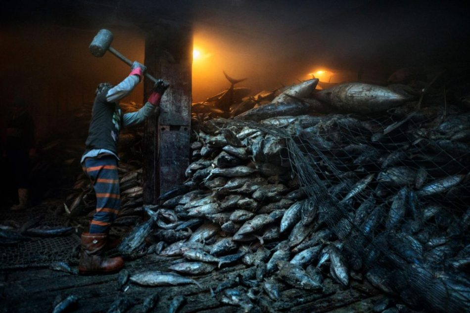 national-geographic-25