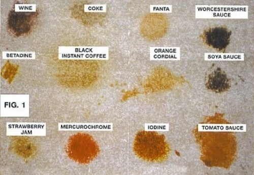 Identifying The Carpet Stain