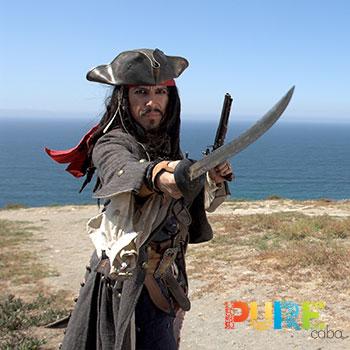 Cabo Pirate Boat Tour
