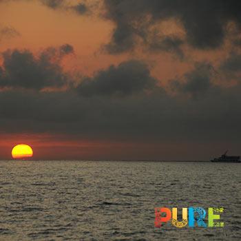 Cabo Sunset Cruise