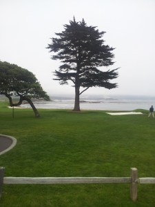 Pebble Beach (1)
