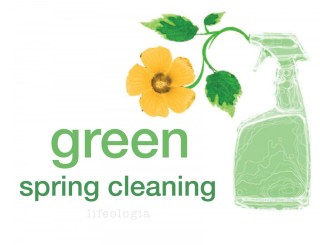 Tips for Green Cleaning Your House