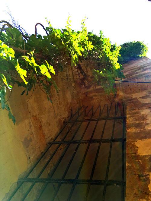 gated walls