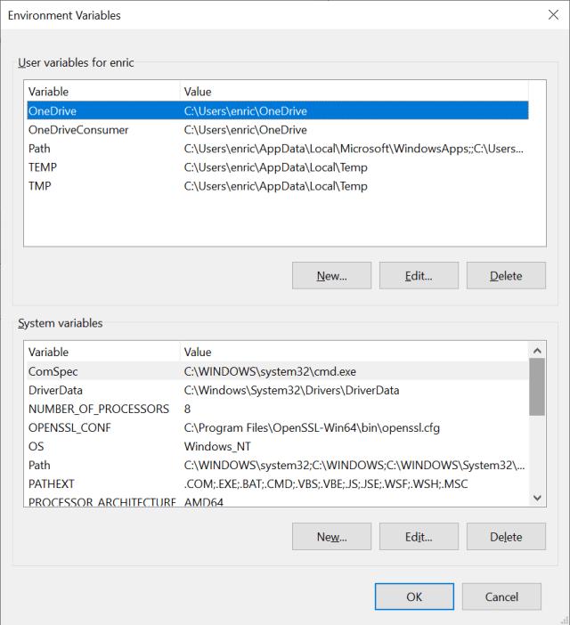 Environment properties on Windows 10