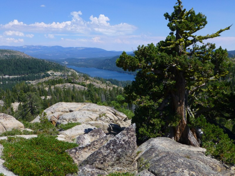 View to Donner Lake